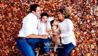 Hetal & Rik Family Photoshoot 2015
